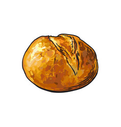 Sketch white round bread isolated vector