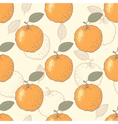 Oranges seamless pattern vector image vector image