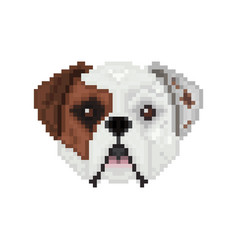 American bulldog dog head in pixel art style vector