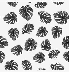 Black white monstera leaves seamless white vector