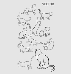 Cat Gesture Sketches vector