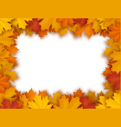 Frame of fallen maple leaves vector