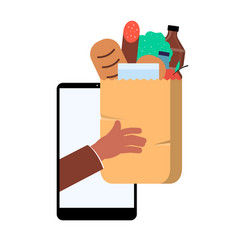 online grocery shopping app concept - store vector image