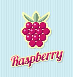 retro raspberry vector image