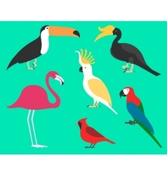 Set of flat birds isolated on background vector