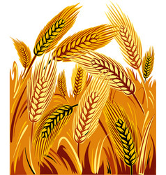 Wheat field under a sun vector