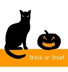 pumpkin and black cat vector image vector image