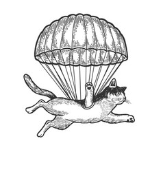 Cat fly with parachute sketch engraving vector