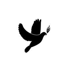 Dove icon with olive branch pigeon black vector