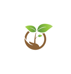 Elegant sprout on a hand and circle agriculture vector