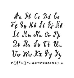 Hand drawn alphabet letters drawn brush pen vector