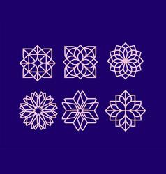 Modern professional icon set flower pattern vector