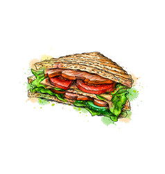 sandwich fast food from a splash of watercolor vector image