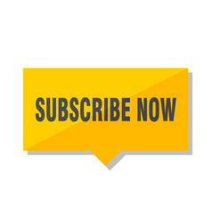 Subscribe now price tag vector