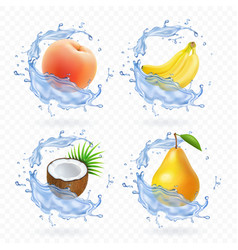 Sweet fruit banana coconut peach pear vector