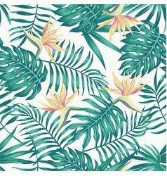 tropical leaves blue tone bird paradise white vector image