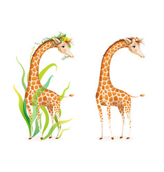 Wild animal giraffe with flowers clipart vector