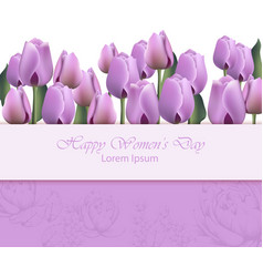 women day card with purple tulip flowers vector image