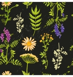 hand drawn wildflowers vector image vector image