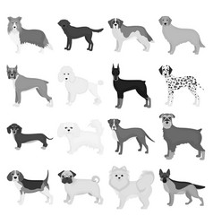Dog pooch breed and other web icon vector