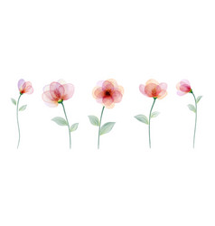 Set watercolor hand painted with colourful flower vector