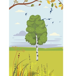 birch and swallows summer landscape vector image vector image