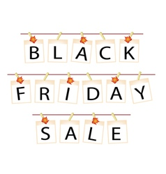 Black Friday of Blank Photos with Maple Leaf vector image