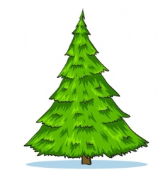 green natural Christmas tree illustration vector image vector image