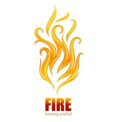 burning flame of fire vector image vector image
