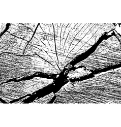 Cracked vector image
