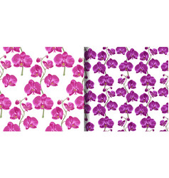 Pink orchid floral seamless patterns set vector