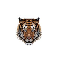 Polygonal tiger head logo design vector