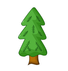 spruce tree icon cartoon style vector image