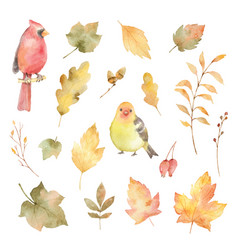watercolor autumn set of leaves and birds vector image