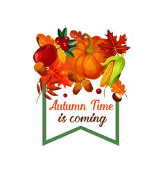 autumn harvest pumpkin leaf poster vector image vector image