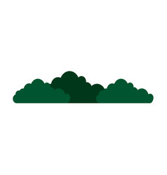Bushes icon image vector