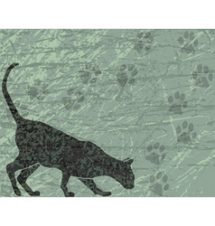 gray cat vector image