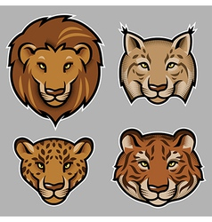 Lion stylized vector