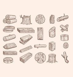 wooden trunks vintage drawn lumber stacked oak vector image
