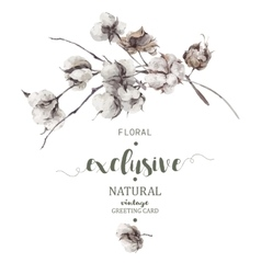 Bouquet of twigs and cotton flowers vector image
