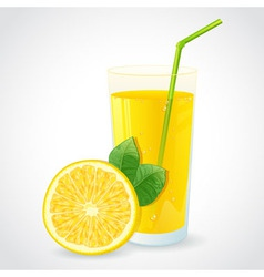 A glass of fresh lemon juice and half of lemon vector
