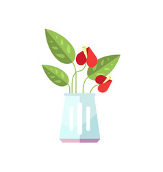 anthurium house plant indoor flower in pot vector image