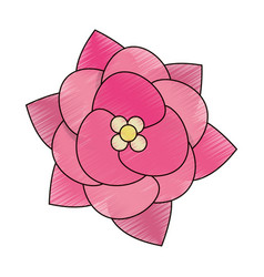 Drawing beauty flower decoration event vector