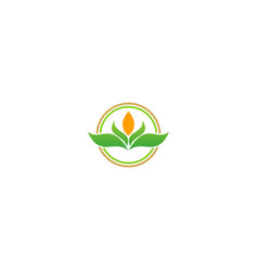 green leaf organic beauty logo vector image