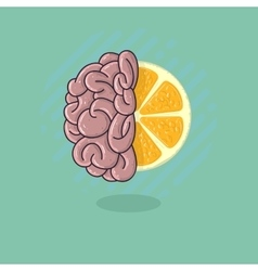 Human Brain Combined With A Citrus Fruit Refresh vector