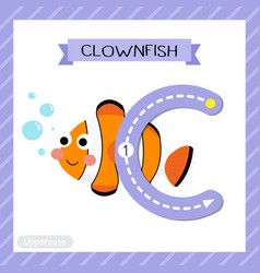 Letter c uppercase tracing clownfish vector