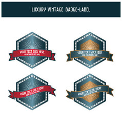 Luxury vintage badge-label vector