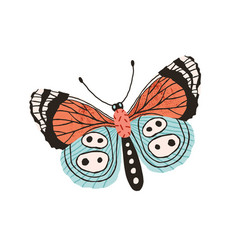 Pretty butterfly with colorful wings and antennae vector
