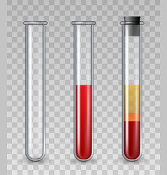 test tubes with blood realistic glass medical vector image