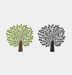 tree logo or symbol nature garden ecology vector image
